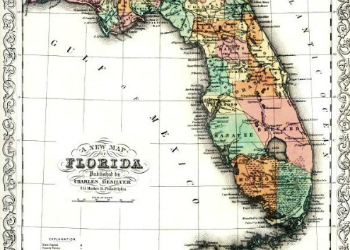 Desilver Map 1856