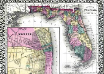 Mitchell Map 1876